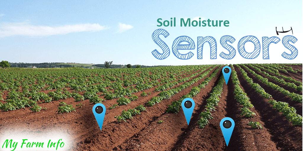 The-Importance-of-Soil-Moisture-Sensors-for-farmers-and-how-it-can-increase-profitability